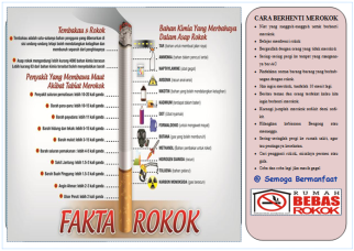 Leaflet 2 ROKOK